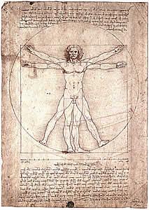 Картинки по запросу Леонардо Давинчи Рисунок человека с расставленными руками и ногами.