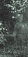 Фотографии привидений на кладбищах